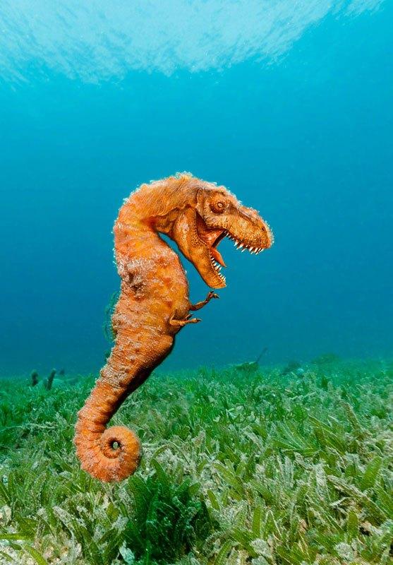Seahorse Dinosaur