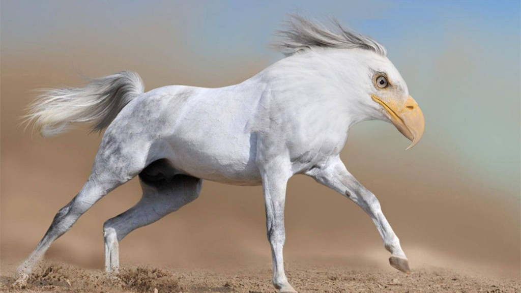 Horse Eagle